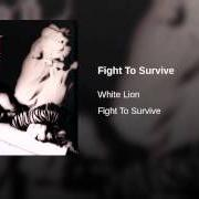 Album Fight to survive