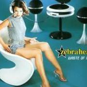Album Waste of mfzb [ep]