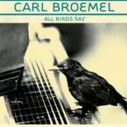 Album All birds say